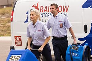 Rainbow International Employee
